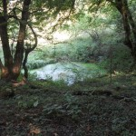 Ajdovško jezero, »Du«