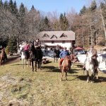 Pohod s konji na kulturni praznik
